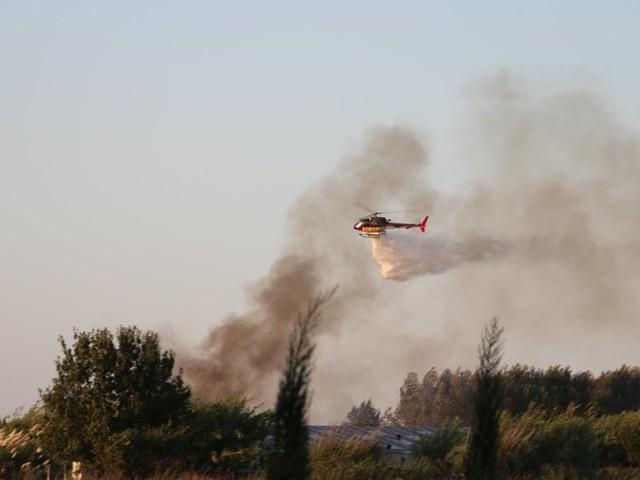 Torreilles : un incendie ravage 8000 m2 de végétation