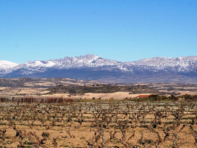 7 choses à faire à la Rioja, sur la route des vins