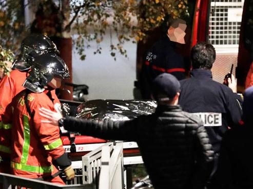 Un tigre de cirque de 200 kilos abattu en plein Paris, son propriétaire en garde à vue