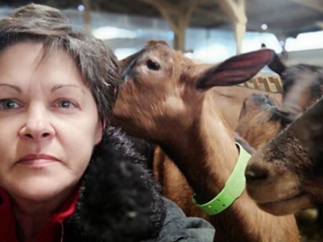 """""""J'ai dû jeter 600 litres de lait"""" : la semaine d'Alexa, éleveuse en Haute-Garonne"""