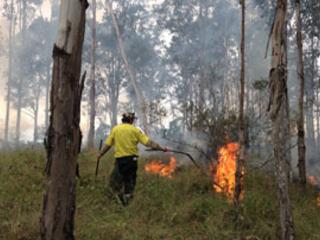 Australie. Les communautés aborigènes – «peuples natifs» – montrent la voie dans la crise provoquée par les incendies