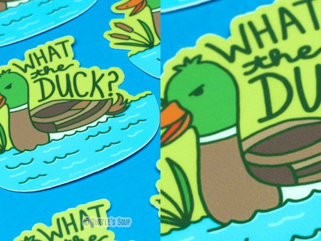[TOPITRUC] Un autocollant « What the duck »
