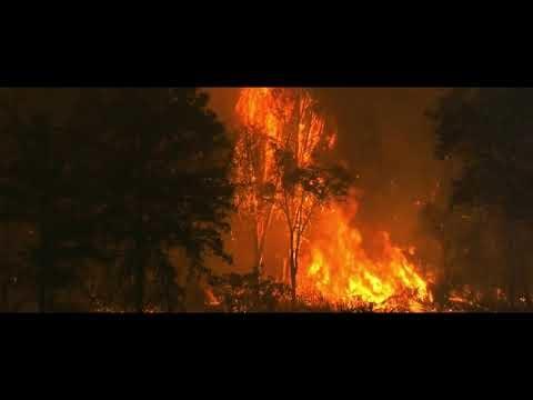 video689-together pangea-rapture