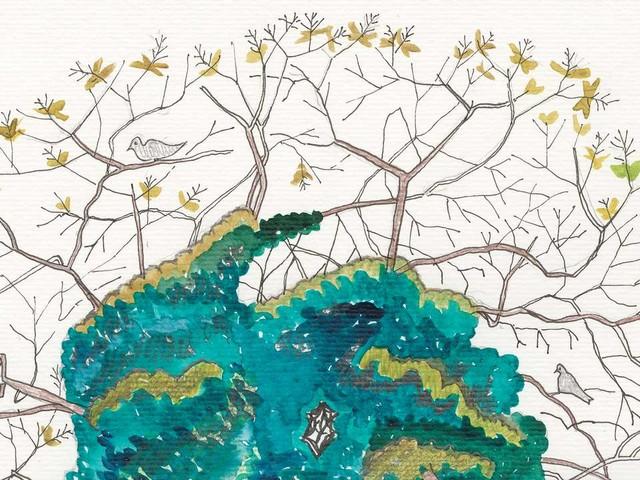 Francis Hallé: «Rien n'est plus beau qu'une forêt primaire»
