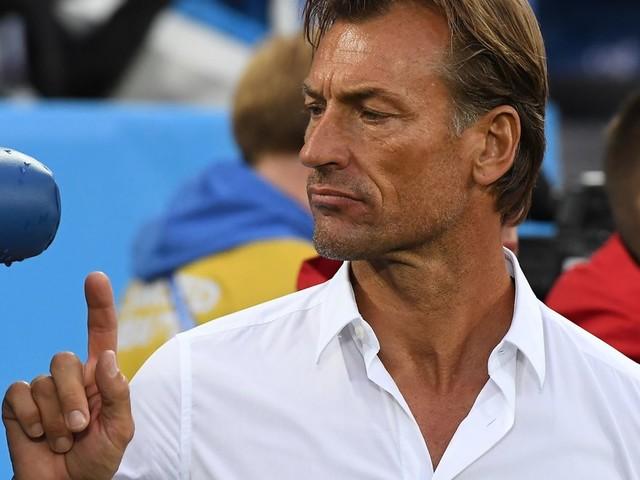 Pour Hervé Renard, le Maroc peut faire le poids face à l'Argentine lors de leur match amical