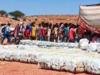 Humanitaire : 65 millions de dollars de l'Onu à l'Ethiopie