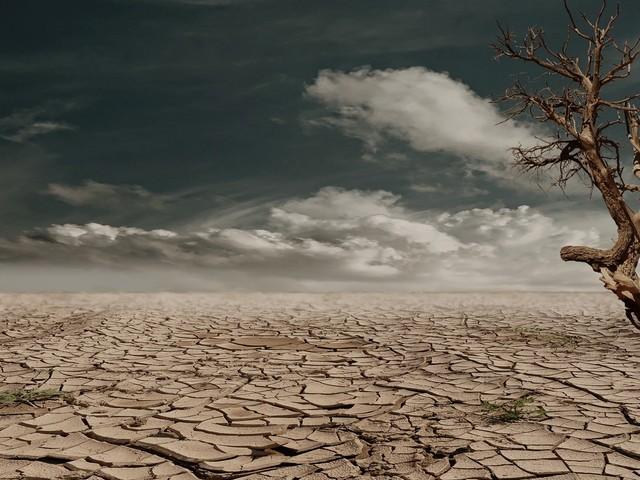 Des documents révèlent que des gouvernements du Moyen Orient craignent des pénuries d'aliments, d'eau et d'énergie, par Nafeez Ahmed