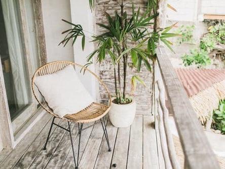 Quelles plantes choisir pour mon balcon et faciles à entretenir ?
