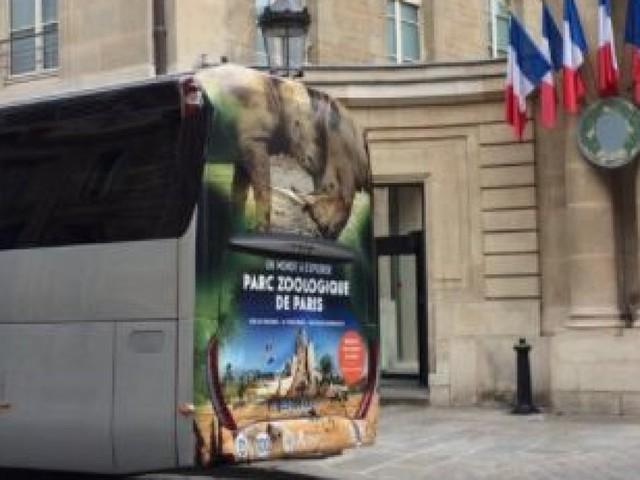 Congrès à Versailles: ce détail sur les cars transportant les parlementaires a bien fait rire