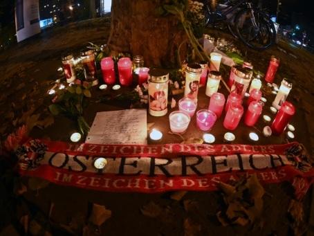 Vienne retrouve sa vie confinée, questions sur le suivi de l'assaillant