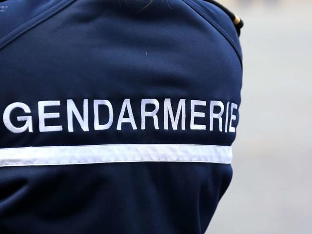 Charente-Maritime et Vienne : trois morts dans des accidents de chasse