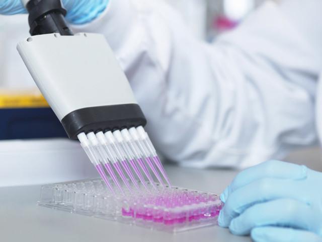 L'ingénierie cellulaire à l'œuvre: les anticorps monoclonaux