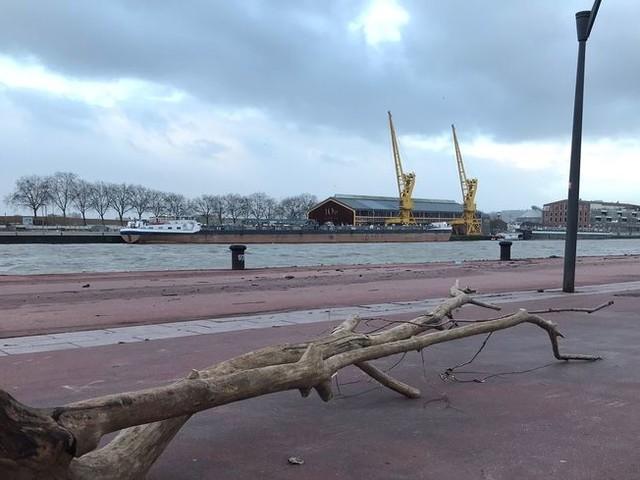 La tempête Dennis souffle sur la Normandie : des rafales à plus de 100 km/h relevées