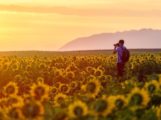 Top 10 des photos Instagram les plus likées en 2019