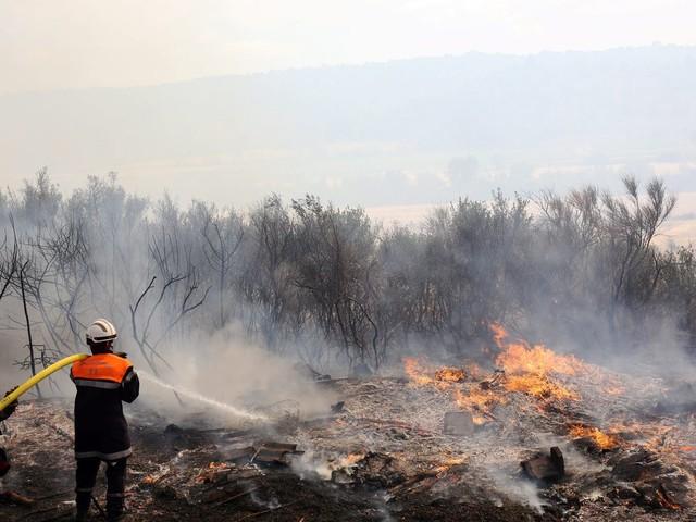 Aude : un incendie parcourt 500hectares à Moux, entre Narbonne et Carcassonne