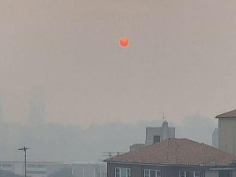 VIDÉO. Incendies en Australie : le Premier ministre rejette tout lien avec le climat