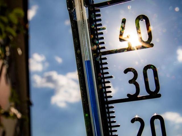 Corse : l'été a battu des records de chaleur