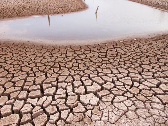 Selon une étude, l'Afrique doit se préparer à subir des températures extrêmes ces dix prochaines années