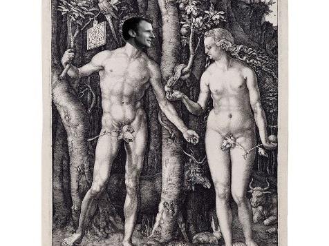 Homo politicus : un regard anatomique