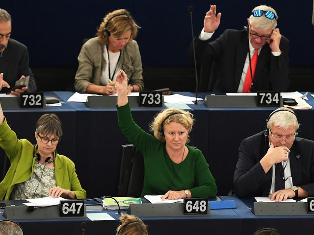 Audiovisuel : comment le CSA et l'Union européenne veulent dompter les Gafa