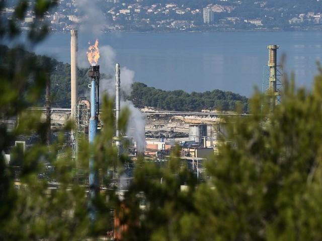 Les députés maintiennent l'huile de palme dans la liste des biocarburants