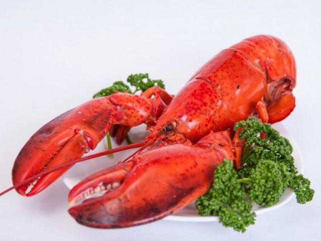 En Suisse, il est désormais interdit de plonger un homard vivant dans une casserole d'eau bouillante