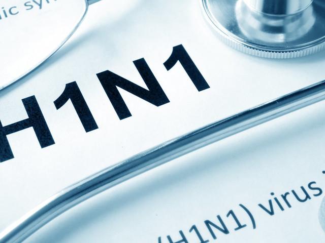 """H1N1: """"Aucune raison de s'inquiéter"""", rassurent le ministère de la Santé et l'OMS"""