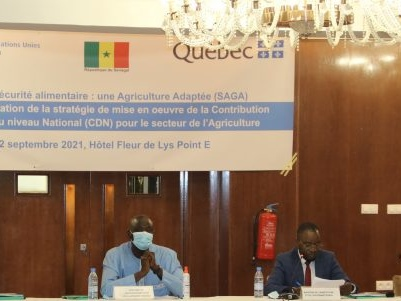 Sénégal : réflexion sur changement climatique et agriculture