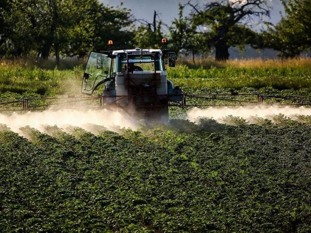Supprimer le glyphosate aura un coût élevé pour les agriculteurs