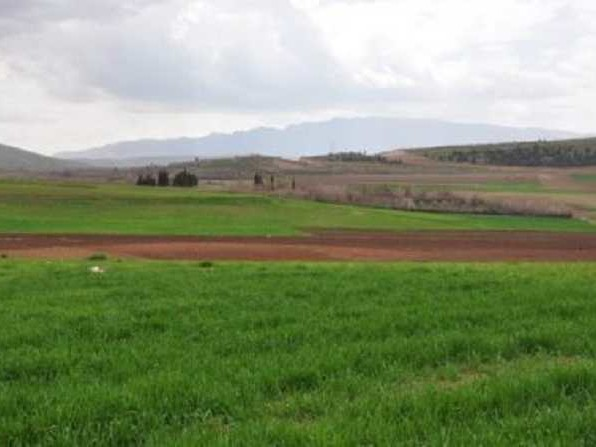 Domaines de l'Etat : récupération de 25 hectares à El Battan et Medjez El Bab.