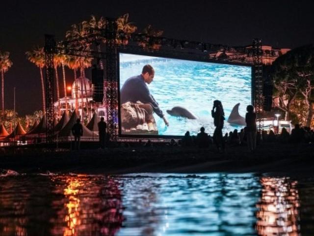 """Cannes se replonge dans """"Le Grand Bleu"""""""