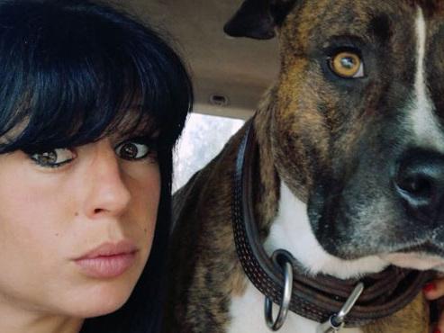 Elisa, tuée par des chiens en France: quel sort pour Curtis, le chien qui l'accompagnait?