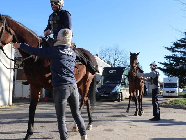 Pau : devenez copropriétaires de chevaux de course