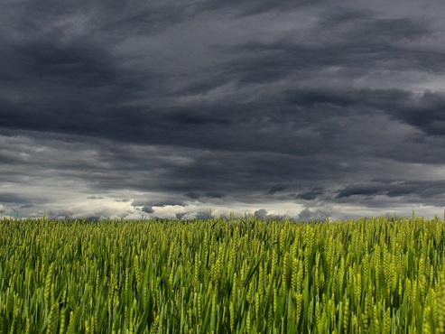Prévisions météo : profitez de cette dernière belle journée avant la DÉGRINGOLADE des températures