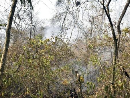 Bolivie: les incendies ont ravagé près d'un million d'hectares