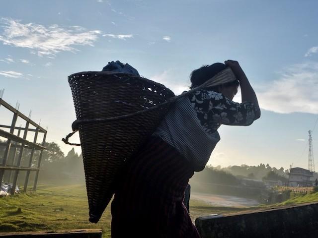 """Journée mondiale de l'état d'urgence environnementale : """"Nous avons le pouvoir de changer les choses"""""""