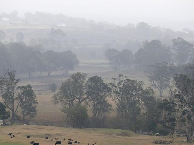 Incendies en Australie: la pluie est tombée sur les feux mais des dizaines brûlent toujours