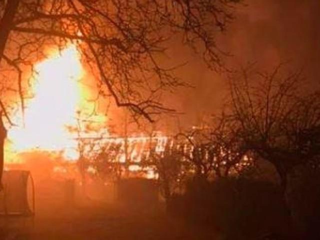 Incendie dans l'abri des singes au zoo de Krefeld: «Aucun animal n'a survécu»