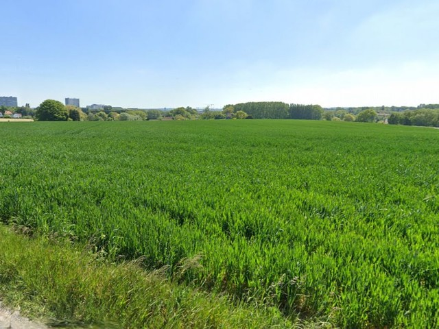 Exploitations, cultures, superficies, potentiel: l'agriculture à Bruxelles, c'est quoi?