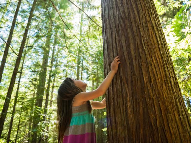 Jour de la Terre: la jeunesse nous rappelle à l'ordre