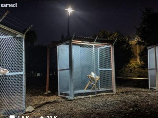 Jésus, Marie et Joseph dans des cages séparées: la crèche qui proteste contre le traitement des migrants aux USA