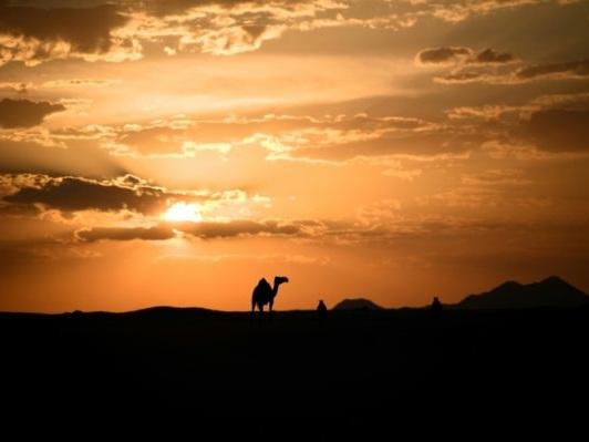L'Arabie saoudite compte faire du Dakar une vitrine pour son tourisme