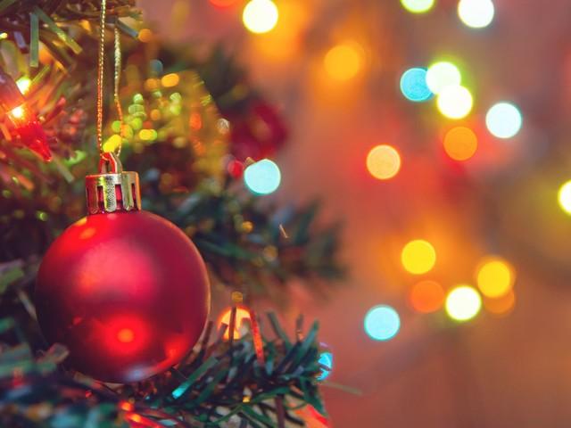 Pour trouver et acheter le sapin de Noël parfait, suivez ce guide