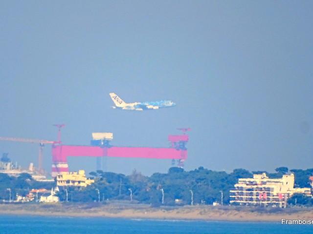 Tharon plage et l'A380 tortue - 2019