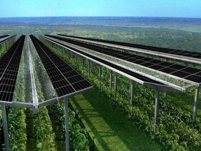 Energies renouvelables : Akuo sur tous les fronts