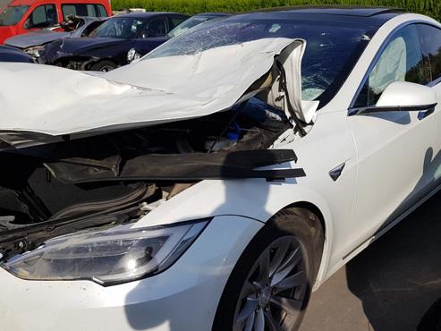 """Patrick en colère: sa """"somptueuse"""" Tesla heurtée par un cerf attend des pièces de rechange depuis... 6 mois"""