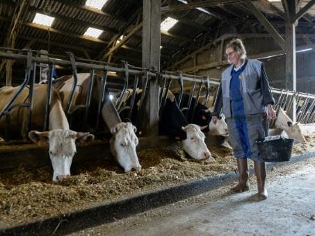 En Bretagne, les gendarmes coachent les agriculteurs face aux intrusions