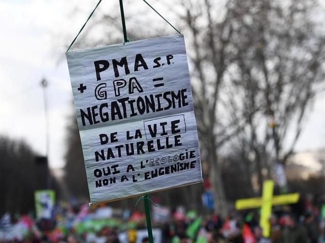 Les opposants à la PMA de nouveau dans la rue avant l'examen de la loi bioéthique au Sénat