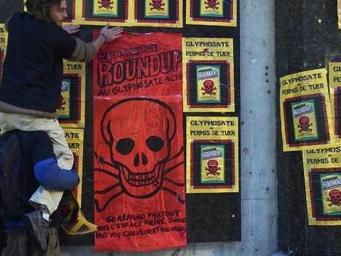 Pourquoi des communes urbaines prennent-elles des arrêtés anti-pesticides?