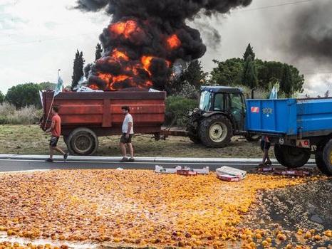 Travail saisonnier: manifestations d'agriculteurs à Valence, Avignon et Perpignan